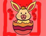 Conill en una closca