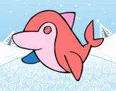Dofí comú